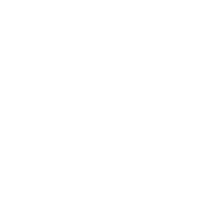Commerical Finance Icon 4